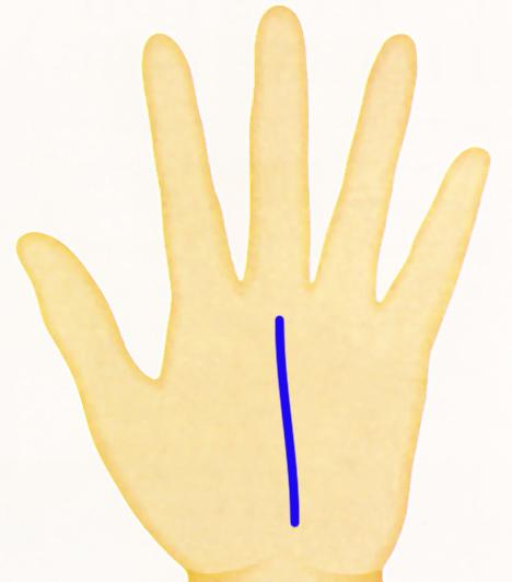 Kéz - sorsvonal