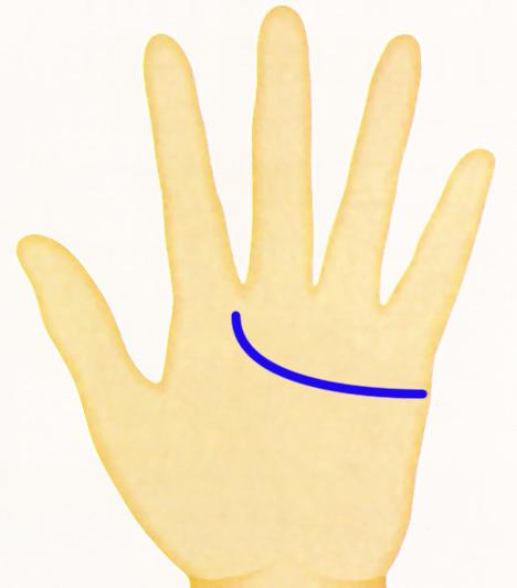 Kéz - szivvonal