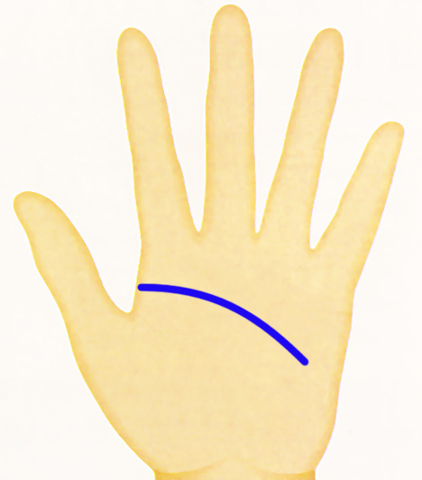 kéz - fejvonal