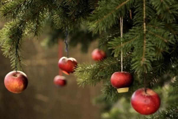 karácsonyfa2