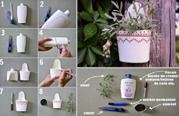 növény2