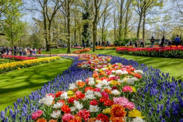 Jaarbeeld rivier liggend bloemen bloei tulpen
